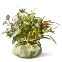 "National Tree Company® 9"" Artificial Table Plant in Rock Planter"