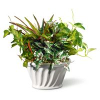 "National Tree Company® 11"" Artificial Table Plant in White Oval Planter"