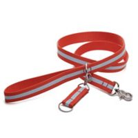 Harry Barker® Eton 6-Foot Dog Leash in Orange/Blue