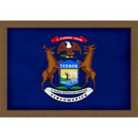 Michigan Textured State Flag 34-Inch x 24-Inch Framed Wall Art
