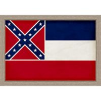 Mississippi Textured State Flag 34-Inch x 24-Inch Framed Wall Art