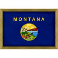 Montana Textured State Flag 34-Inch x 24-Inch Framed Wall Art