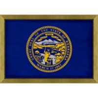 Nebraska Textured State Flag 34-Inch x 24-Inch Framed Wall Art