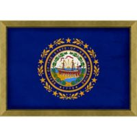 New Hampshire Textured State Flag 34-Inch x 24-Inch Framed Wall Art