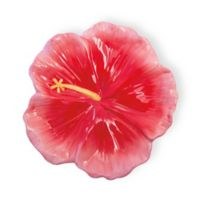 Boston International Hibiscus Heaven Serving Bowl in Pink