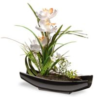 National Tree Company 12-Inch Artificial Orchid Arrangement in White with Black Planter