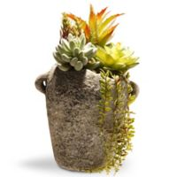National Tree Company® 11.8-Inch Artificial Succulent Arrangement in Pot