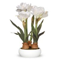 National Tree Company 20-Inch Artificial Amaryllis Arrangement in White with White Planter