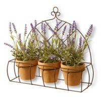 National Tree Company 17-Inch Potted Lavender Plants with Black Wire Rack
