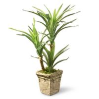 National Tree Company® 14-Inch Yucca Artificial Plant with Pot