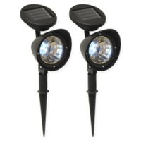 LumaBase Ground-Stake LED Solar Spotlights in Black (Set of 2)