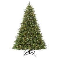 Puleo International 12-Foot Pre-Lit Slim Fraser Fir Artificial Christmas Tree