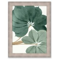 Nature Study 13-Inch x 17-Inch Canvas Wall Art