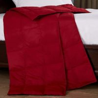 Puredown All-Season Goose Down Throw Blanket in Red