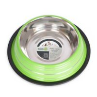 Iconic Pet Color Splash Stripe Non-Skid 4-Cup Pet Bowl in Green