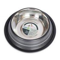 Iconic Pet Color Splash Stripe Non-Skid 8-Cup Pet Bowl in Black