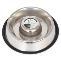 Iconic Pet Metallic Slow Feed 1.5-Cup Pet Bowl