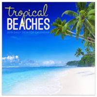 Tropical 2019 Daily Desktop Calendar