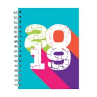 Color Block 2019 Large Weekly/Monthly Planner