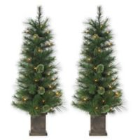 Gerson 4-Foot Pre-Lit Potted Hard Needle Alaskan Fir Artificial Christmas Tree (Set of 2)