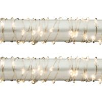 Gerson 5-Foot LED Light Strings in Warm White (Set of 2)