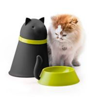 Kitty Pet Feeder with Cover in Black