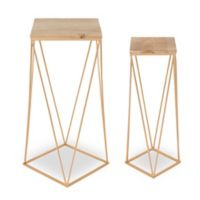 Kate and Laurel Gabriele Nesting Tables in Wood/Gold (Set of 2)