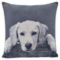 Danya B.™ Labrador Puppy Square Throw Pillow in Grey