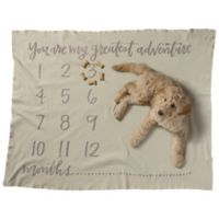 Primitives by Kathy® Greatest Adventure Swaddle Blanket