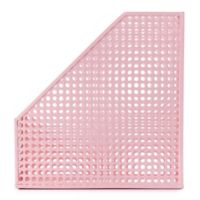 Edison Magazine File in Pink
