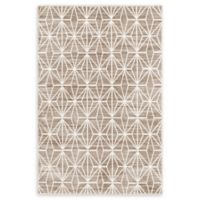 Jill Zarin™ Uptown Fifth Avenue 4' x 6' Area Rug in Brown