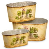 National Tree Company Painted Galvanized Pot Assortment in Cream (Set of 3)