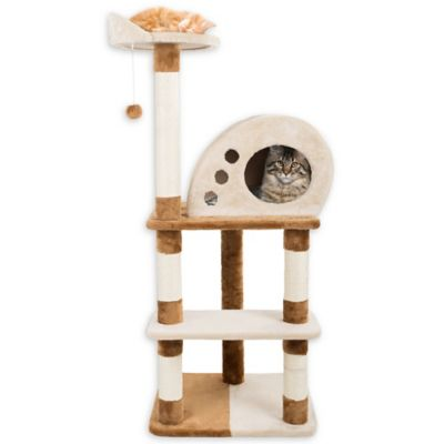 Buy Cat Scratching Posts from Bed Bath & Beyond
