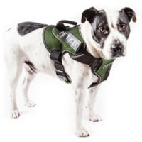 PETKIT Air Compression Large Dog Harness in Green