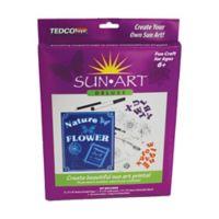 Tedco Toys SunArt Deluxe Art Kit