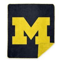 University of Michigan Denali Sliver Knit Throw Blanket