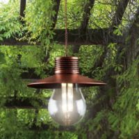 Edison Solar Hanging Light in Bronze