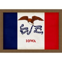 Iowa Textured State Flag 34-Inch x 24-Inch Framed Wall Art