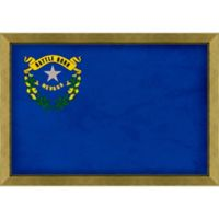Nevada Textured State Flag 34-Inch x 24-Inch Framed Wall Art