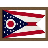 Ohio Textured State Flag 34-Inch x 24-Inch Framed Wall Art