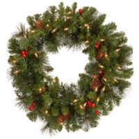 National Tree Company 20-Inch Crestwood Spruce Pre-Lit Wreath with Clear Lights