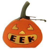"Northlight® Pre-Lit LED ""EEK"" Jack-o-Lantern Halloween Decoration in Orange"