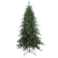 Northlight 9-Foot Pre-Lit Eden Fir Christmas Tree