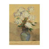 Trademark Fine Art 14-Inch x 19-Inch Albena Hristova Summer Hydragea II Crop Canvas Wall Art