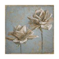 Trademark Fine Art Seed Pod II 14-Inch x 14-Inch Canvas Wall Art