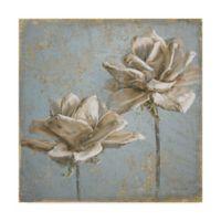 Trademark Fine Art Seed Pod II 35-Inch x 35-Inch Canvas Wall Art