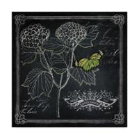 Trademark Fine Art 14-Inch x 14-Inch Chalkboard Botanical I Canvas Wall Art