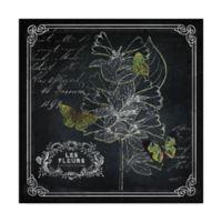 Trademark Fine Art 35-Inch x 35-Inch Chalkboard Botanical II Canvas Wall Art