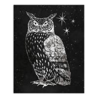 Designs Direct Grey Night Owl 16-Inch x 20-Inch Canvas Wall Art