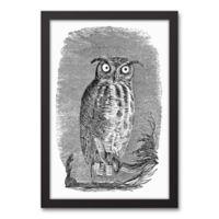Designs Direct Night Owl 14-Inch x 20-Inch Framed Wall Art